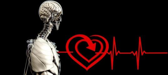 Примите участие в исследовании, чтобы оценить риск сердечно-сосудистых заболеваний.